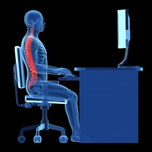 xray of person sitting at the computer from the side